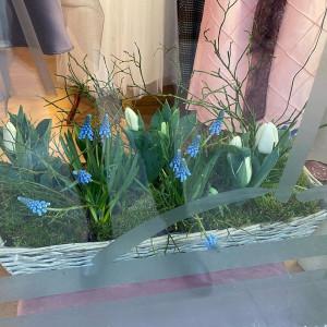 Frühling im Schaufenster